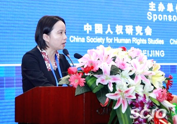Chinese Foreign Ministry's Special Representative on Human Rights, Lu Hua.