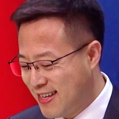 Chinese Foreign Ministry spokesperson Xhao Lijian. (credit : @zlj517/twitter)