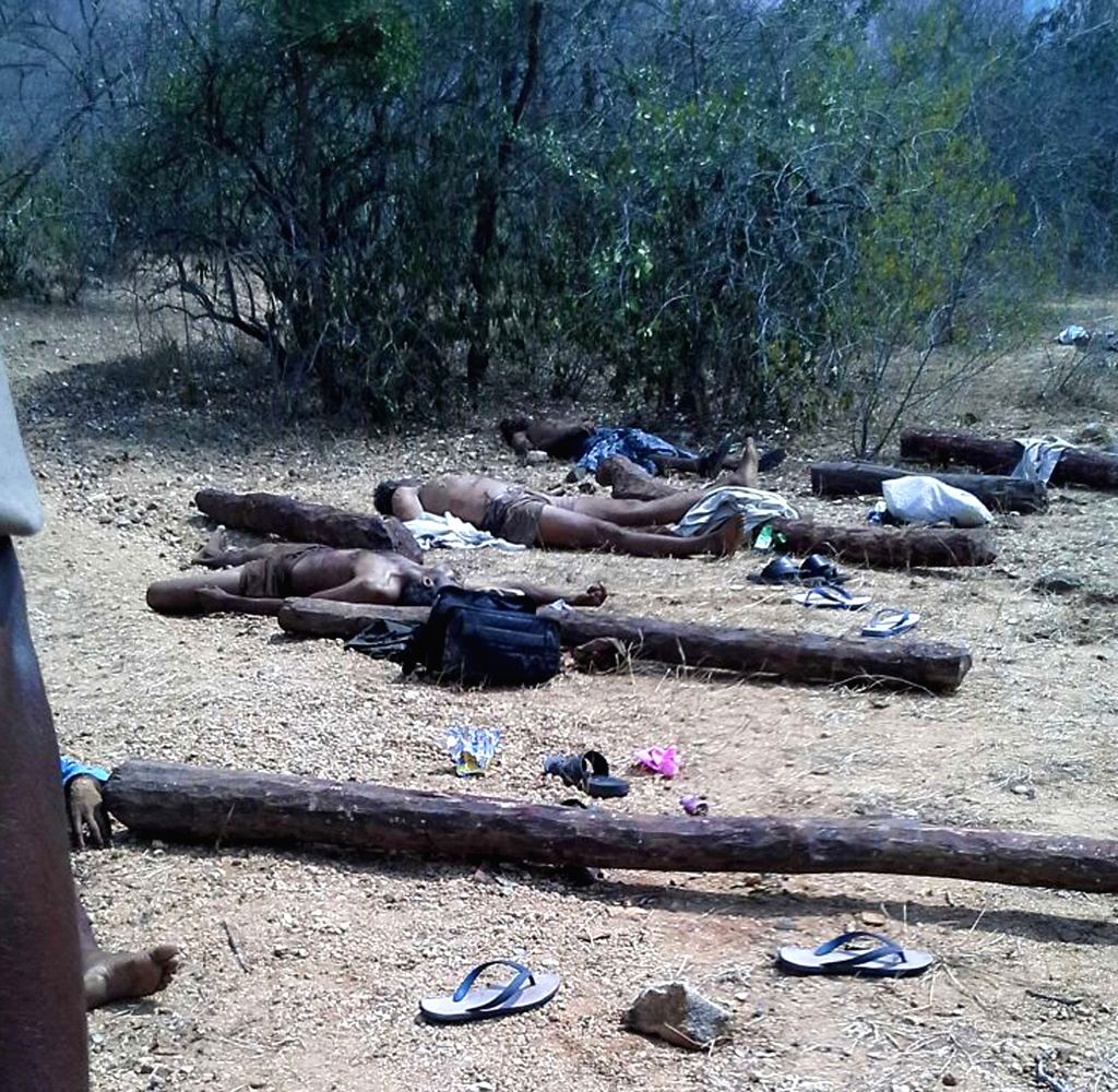 The bodies of the smugglers of red sanders -an expensive wood used in aphrodisiac drugs and to make musical instruments - who were gunned down by police in Andhra Pradesh's Chittoor ...