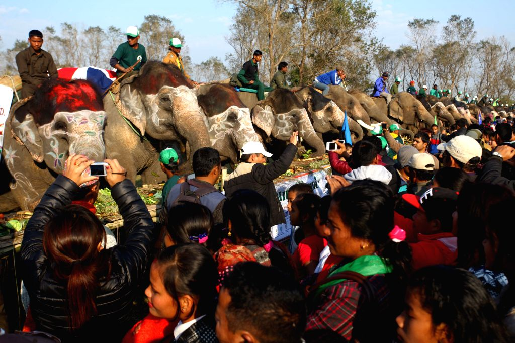 People watch the elephants eating fruits and other foods during the Elephant Picnic at Chitwan, Nepal, Dec. 27, 2014. 127 elephants participated in the Elephant ...