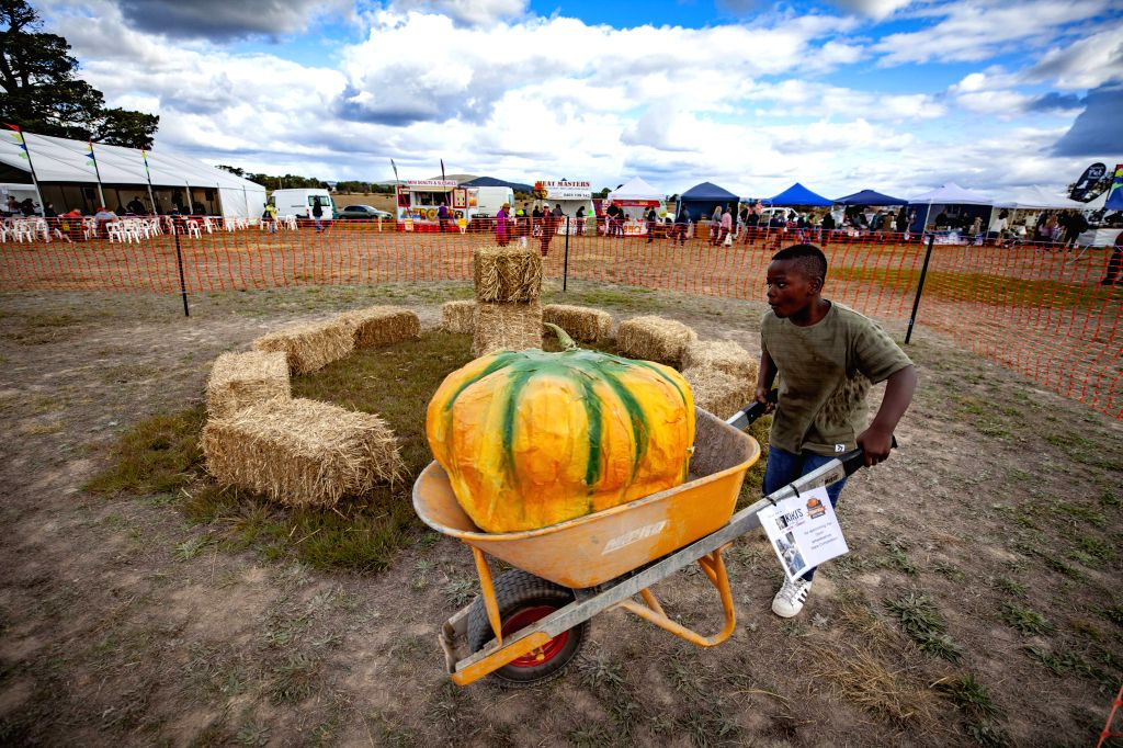 COLLECTOR, May 6, 2019 - A boy takes part in a wheel barrow race on Pumpkin Festival in Collector, half an hour's drive from Australian capital Canberra, on May 5, 2019. The Collector Village Pumpkin ...
