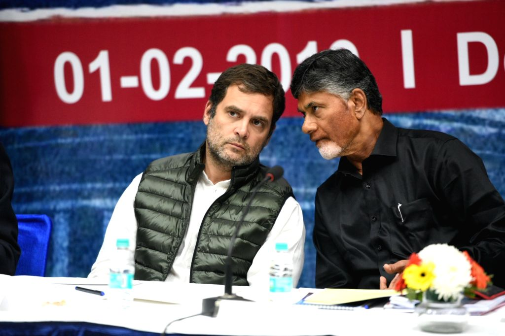 """Congress President Rahul Gandhi and TDP chief Chandrababu Naidu during a programme on """"Save The Nation Save Democracy"""",  in New Delhi, on Feb 1, 2019. - Rahul Gandhi and Chandrababu Naidu"""