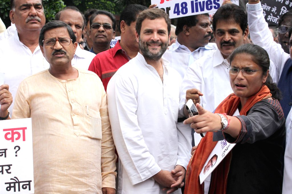 Congress vice president Rahul Gandhi and other parliamentarians stage a demonstration at the Parliament  in New Delhi, on Aug 13, 2015. - Rahul Gandhi
