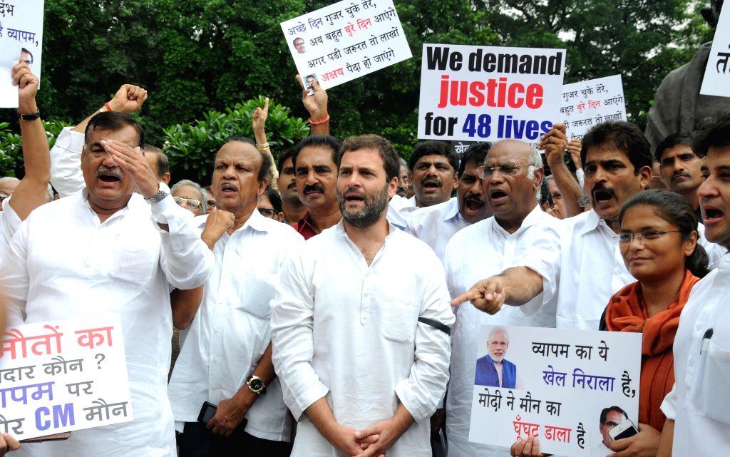 Congress vice president Rahul Gandhi, Leader of the Congress parliamentary party in Lok Sabha Mallikarjun Kharge, party MP Jyotiraditya Scindia and other parliamentarians stage a ... - Rahul Gandhi