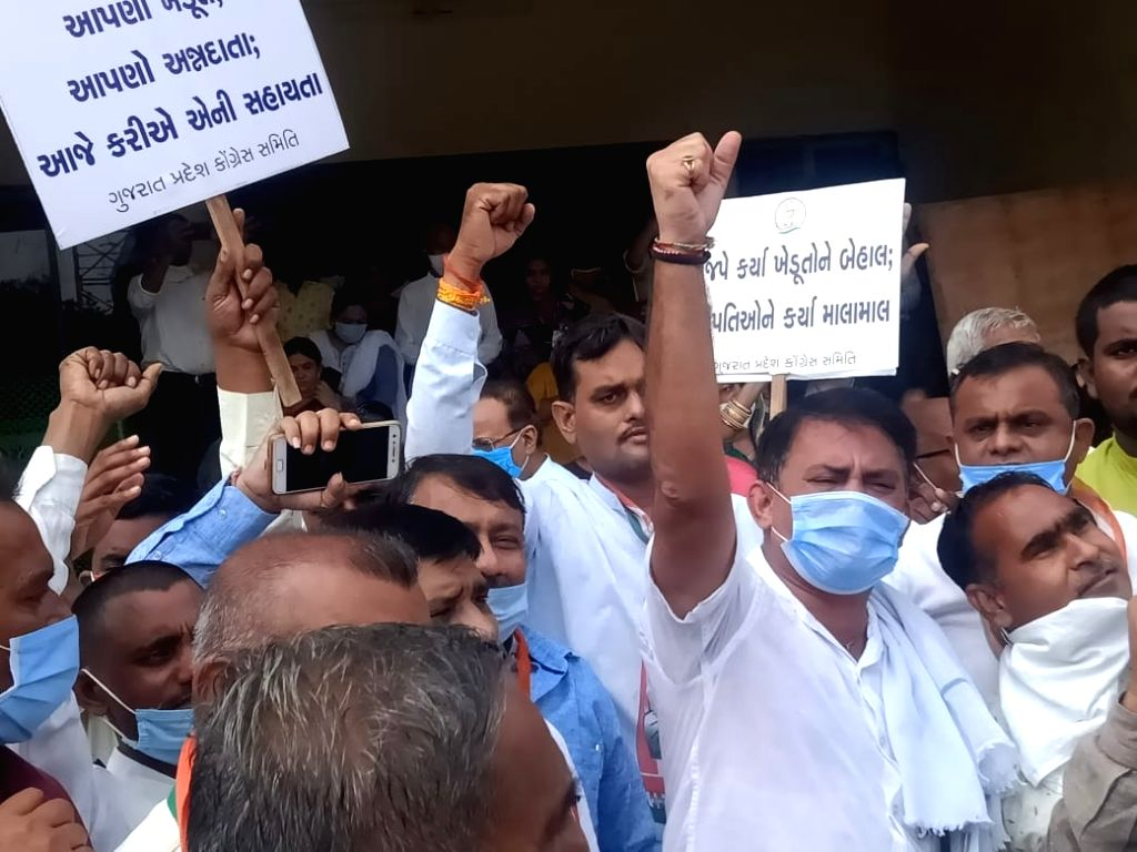 Congress workers stage a demonstration against the contentious agricultural laws, in Gandhinagar on Sep 28, 2020. The protest was thwarted by the police after Congress workers were taken ...