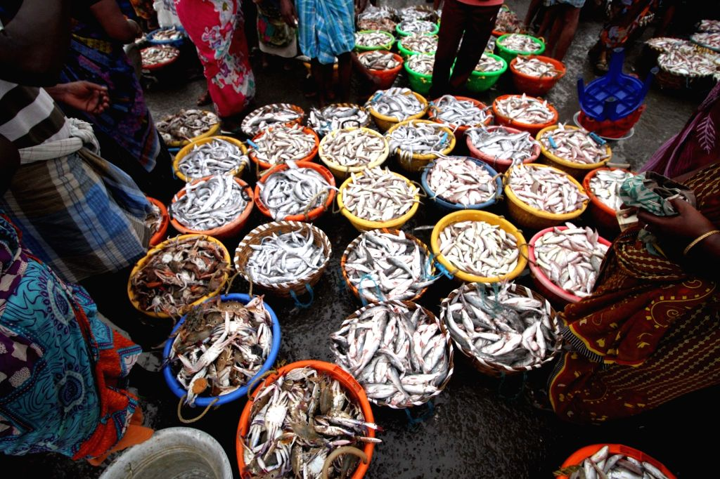 COVID-19 forces circus queen to become fish vendor