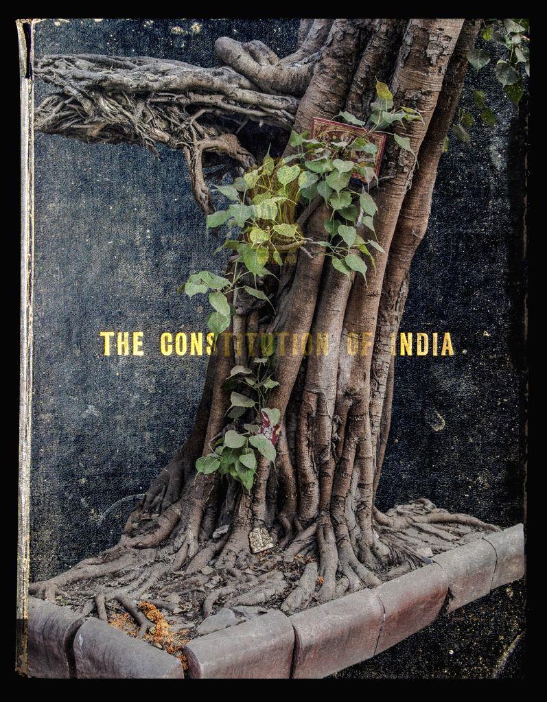 Dadaji's Sarojini Nagar Books - The Constitution' by Juhi Saklani. (Photo Source: Juhi Saklani)