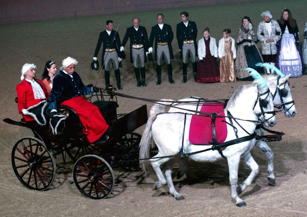 Lipizzaner horses perform during the Lipizzaner Christmas Ball at State Stud Farm in Dakovo, eastern Croatia, Dec. 20, 2014. The Lipizzaner Christmas Ball is a ...