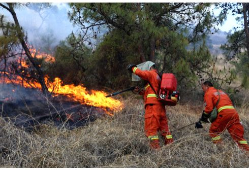 DALI, May 24, 2018 - Firefighters try to put out forest fire at Yunlang Village of Fengyi Town in Dali Bai Autonomous Prefecture, southwest China's Yunnan Province, May 22, 2018. A forest fire that ...