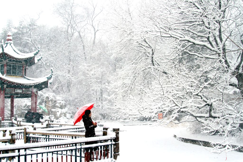 Local residents enjoy the beauty of snow in Dandong, northeast China's Liaoning Province, Feb. 25, 2015. Dandong witnessed its first snowfall in the new Year of ...