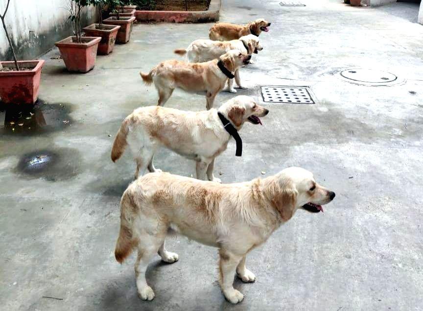 Delhi Police Dog Squad. (Photo: IANS)