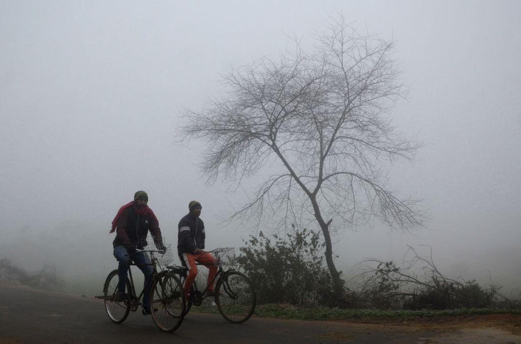 Dense Fog on the outskirt of Amritsar on Monday.