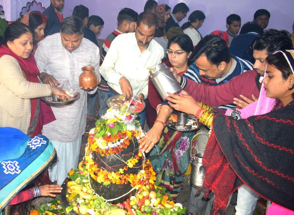 Devotees worship lord Shiva on 'Maha Shivratri' in Mathura, on  March 4, 2019.