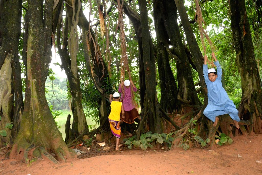 DHAKA, July 4, 2017 - Children play on a century-old banyan tree at Birulia village in Asuhlia on the outskirts of Dhaka, capital of Bangladesh, July 4, 2017.