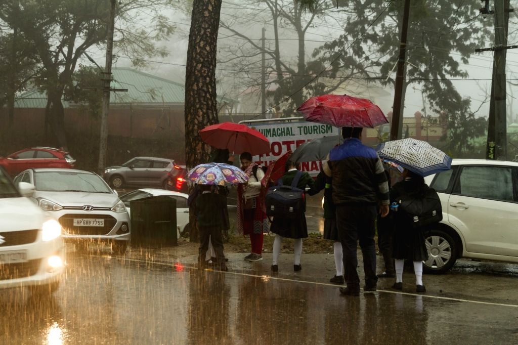 Dharamshala: People shield themselves with umbrellas during rains in Dharamshala, Himachal Pradesh on Feb 7, 2019. (Photo: IANS)