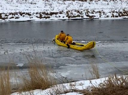 Dog reunited with owner after falling into river, Tweeple hails.