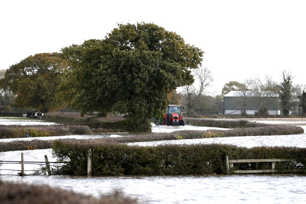 DONCASTER, Nov. 12, 2019 - Photo taken on Nov. 11, 2019 shows a tractor in floodwater on the road to Fishlake village in Doncaster, Britain. The British government activated on Saturday an emergency ...