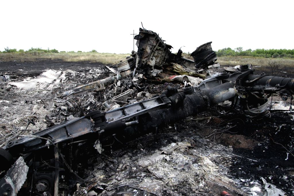 Photo taken on July 18, 2014 shows the debris of MH17 of Malaysian Airlines near the city of Shakhtarsk in Ukraine's Donetsk region. Malaysian Transport Minister ... - Liow Tiong Lai