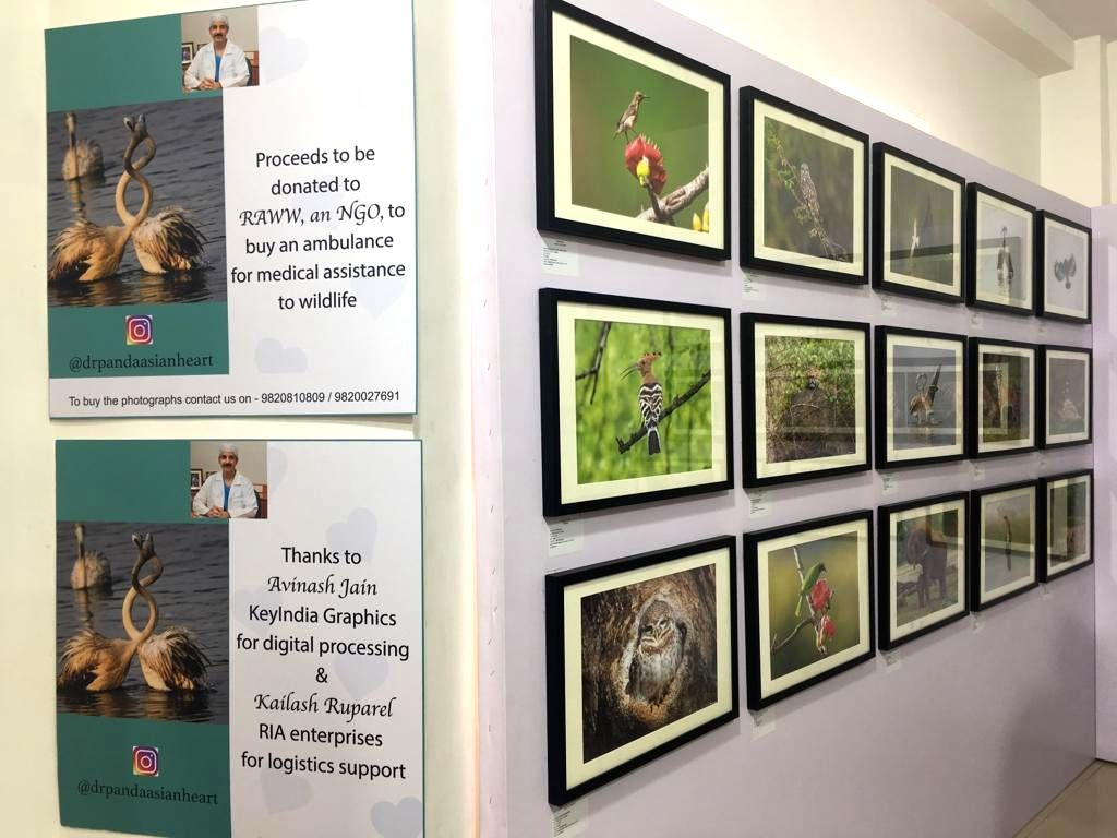 Dr. Ramakanta Panda's photographs on display at an exhibition.
