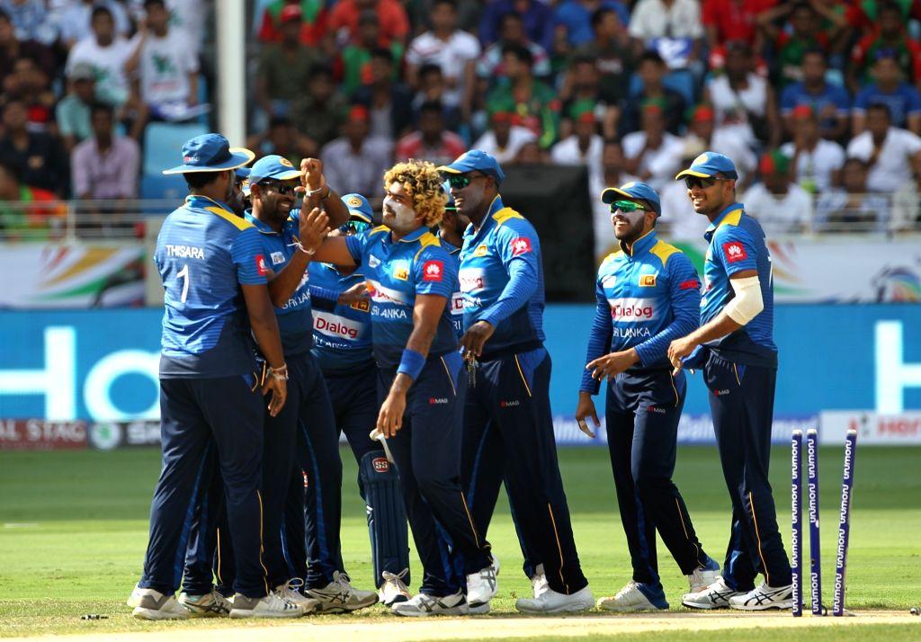 Dubai: Lasith Malinga of Sri Lanka celebrates fall of a wicket during Asia Cup 2018 Group B match between Bangladesh and Sri Lanka at Dubai International Cricket Stadium in Dubai, UAE on Sept 15, 2018. (Photo: Surjeet Yadav/IANS) - Surjeet Yadav