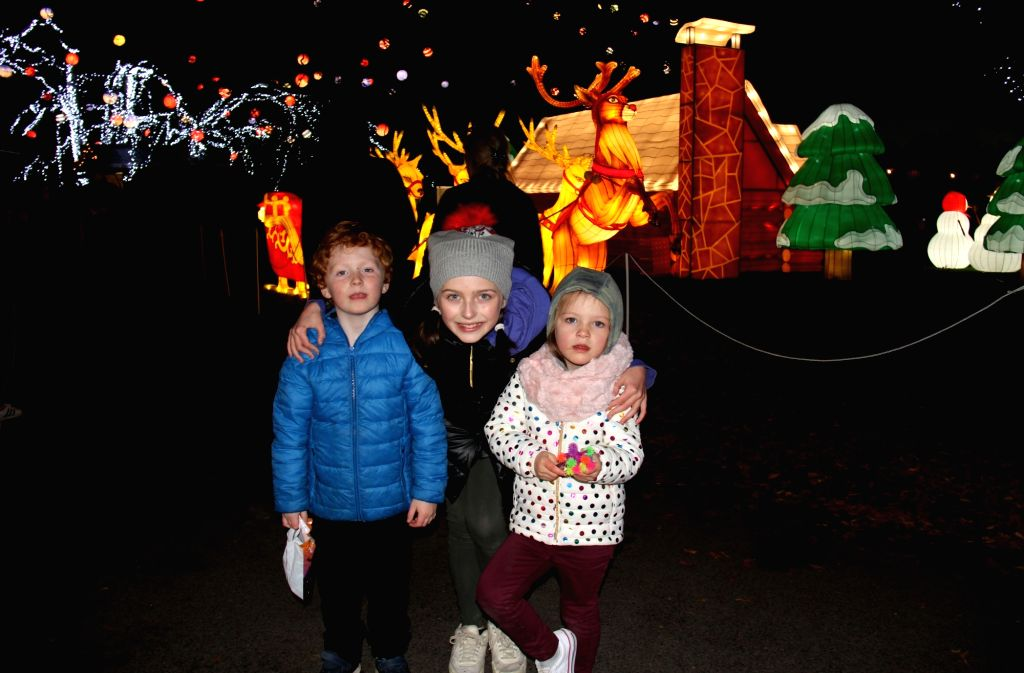 DUBLIN, Nov. 2, 2018 - People pose for a photo at a lantern festival in Dublin Zoo, Dublin, Ireland, Nov. 1, 2018. A lantern festival with all creations from China opened here at Dublin Zoo on ...