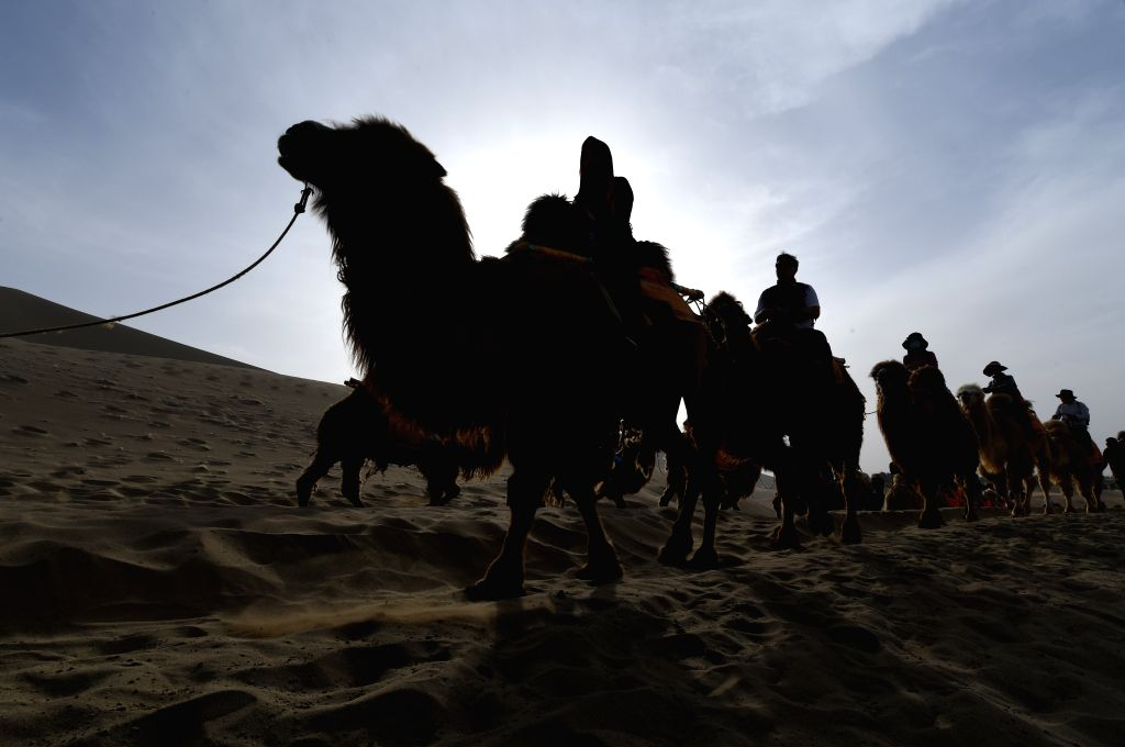 DUNHUANG, May 1, 2019 - Tourists ride camels in the Crescent Spring and Mingsha Sand Dune scenic area in Dunhuang, northwest China's Gansu Province, on May 1, 2019, the first day of the four-day May ...