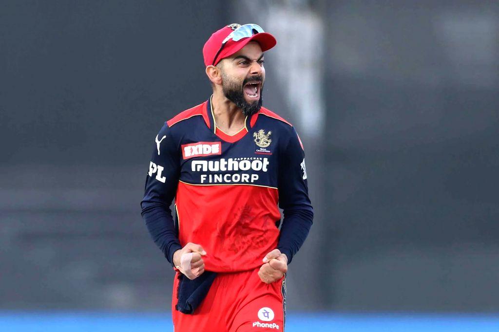 Eight wins out of 12 games is a great campaign: Virat Kohli. - Virat Kohli