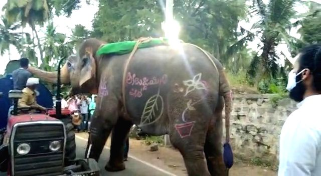 Elephant stops water tanker to quench thirst during Hampi utsav, video goes viral.