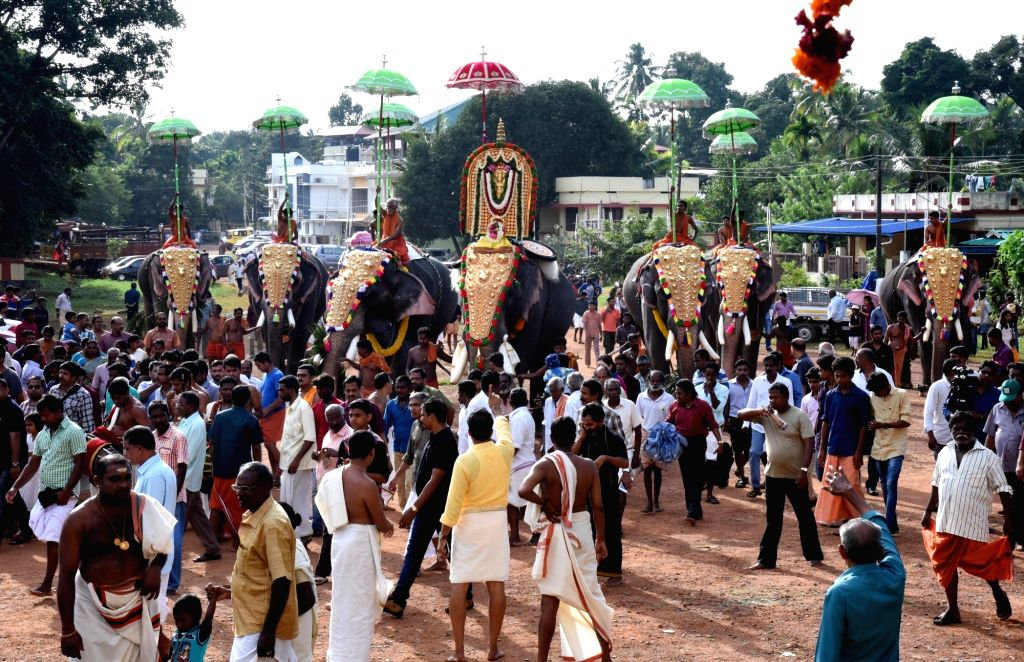 Elephants during a Onam procession at Thrikkakara Temple in Kochi, on Sept 13, 2016.