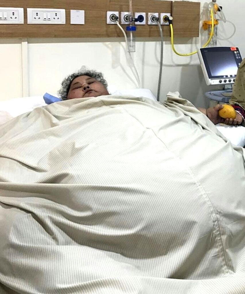 Eman Ahmed Abdelaty, the 36-year-old Egyptian woman who at 500 kilos is the world's heaviest, has undergone a successfully Laparoscopic Sleeve Gastrectomy surgery at Saifee Hospital's ...