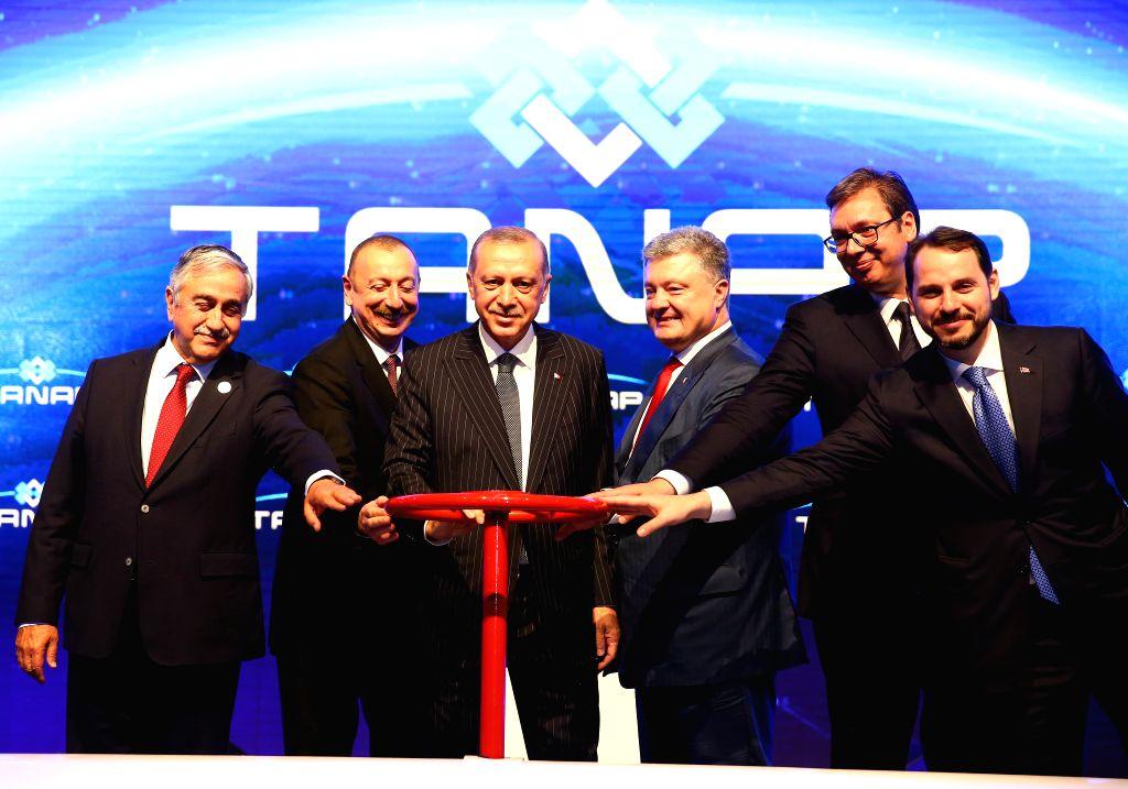 ESKISEHIR(TURKEY), June 13, 2018 Turkish President Recep Tayyip Erdogan (3rd L), Azerbaijani President Ilham Aliyev (2nd L), Ukrainian President Petro Poroshenko (3rd R) and Serbian ...