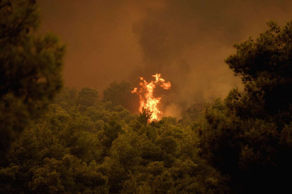 EVIA ISLAND, Aug. 13, 2019 - Flames are seen scorching a forest near Makrymalli village on Evia island, Greece, Aug. 13, 2019. Greek fire fighters were battling the largest wildfires of this summer ...