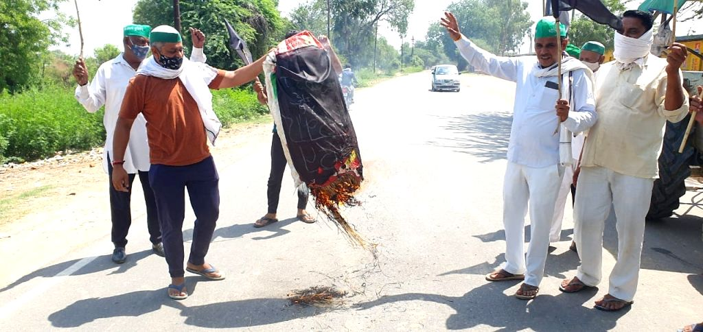 Farmers celebrate 'protest day', slogans protesting effigy burn government.