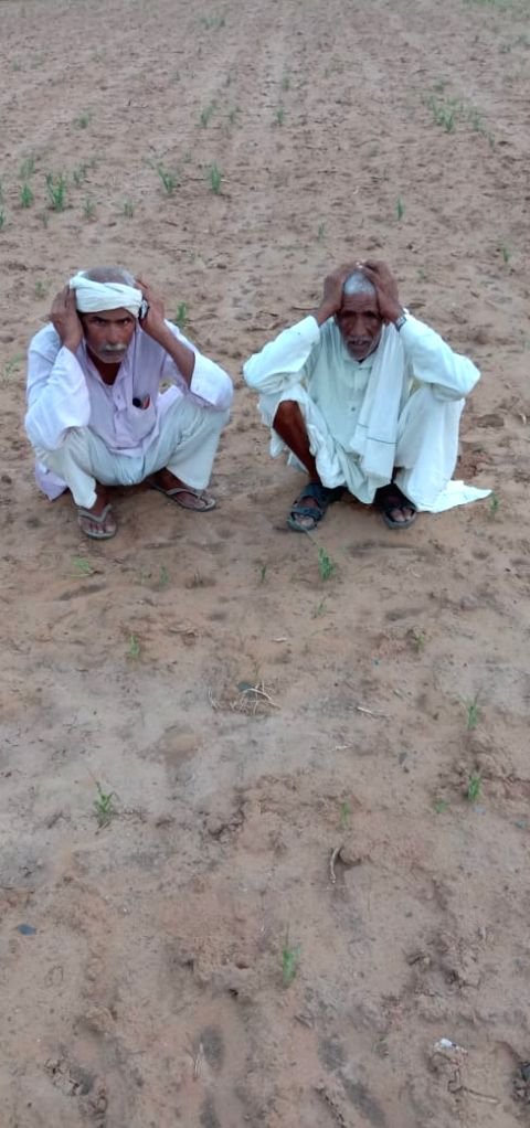 Farmers sitting with sad face after locusts have damaged their fields.