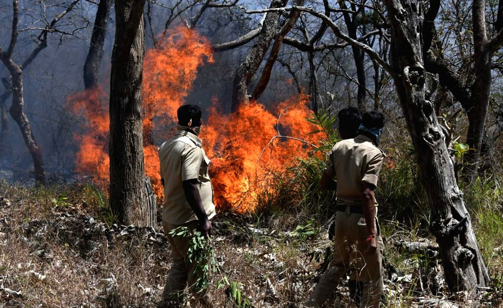 Fire fighters busy dousing a fire which spread in Bandipur Tiger Reserve in Karnataka on Feb 24, 2019.