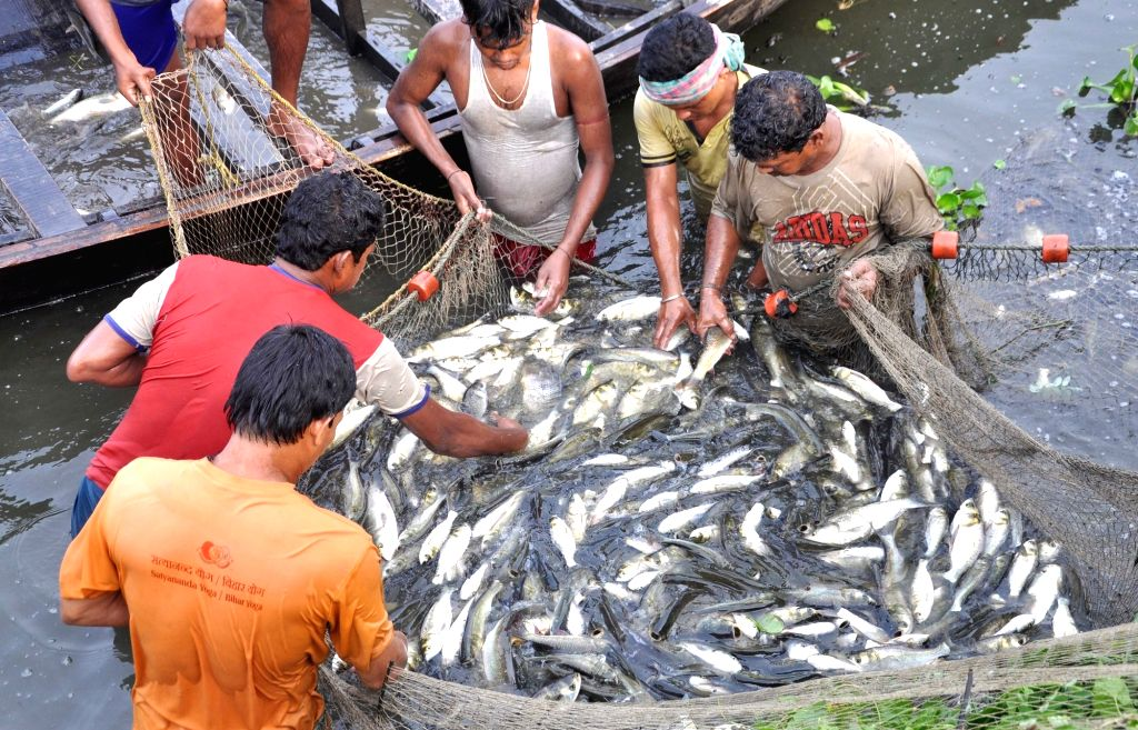 Fishermen busy fishing in a Kolkata waterbody in Kolkata, on May 18, 2017.