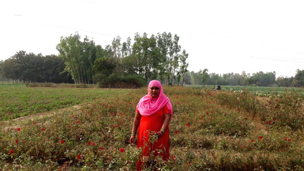 Flower farming.