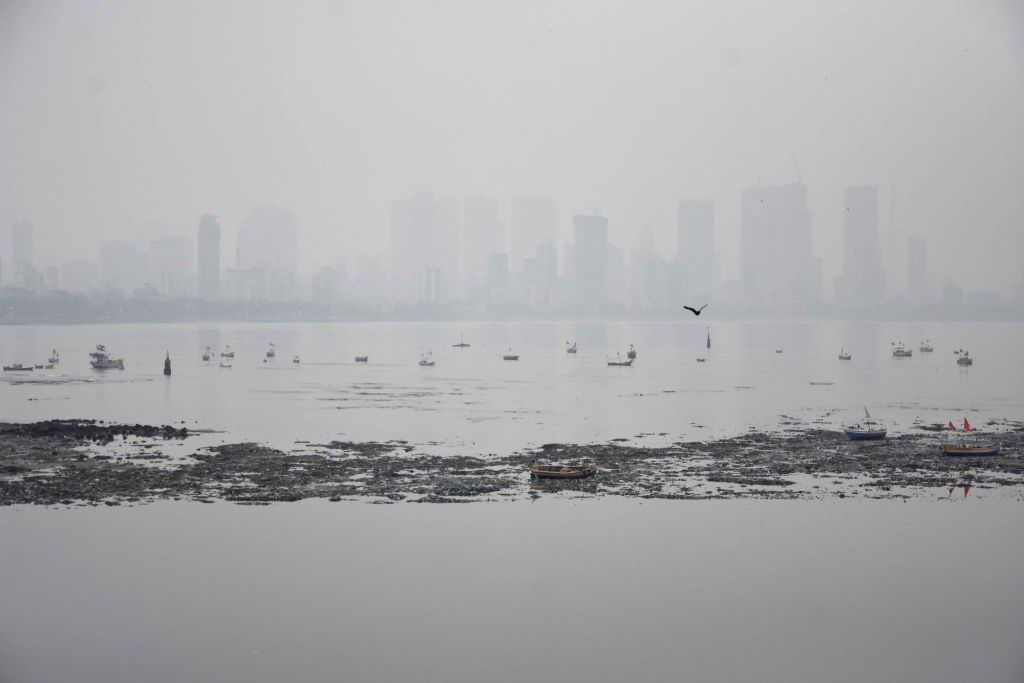 Fog envelopes Mumbai with the onset of winters on Dec 5, 2019.