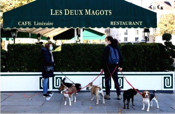 France envisages gradual lockdown exit: Officia