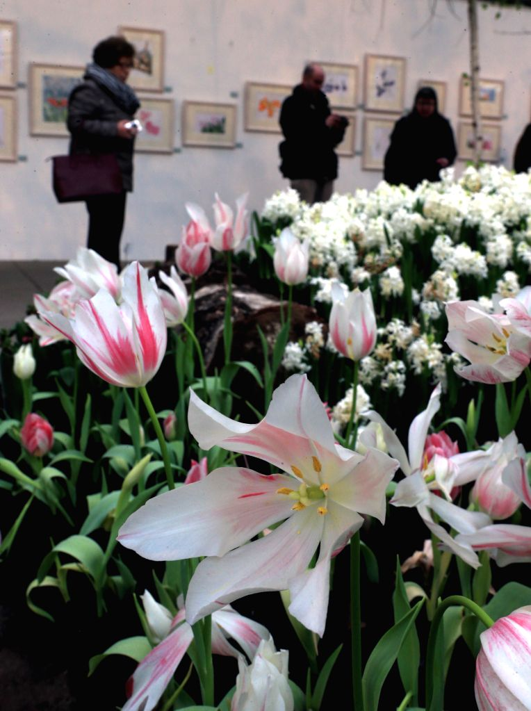 "FRANKFURT, March 6, 2017 - People visit the flower exhibition ""Springtime"" at the Palm Garden in Frankfurt, Germany, on March 5, 2017. The exhibition was held from Feb. 16 to March 5."