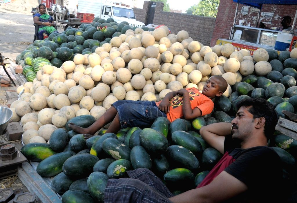 Fruit vendors take an afternoon nap on a heap of musk melons and water melons at a fruit mandi on a hot sunny day, in Amritsar on May 31, 2019.