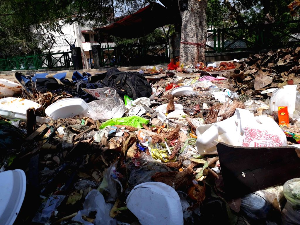 Garbage dumped on a Delhi road on June 22, 2017.