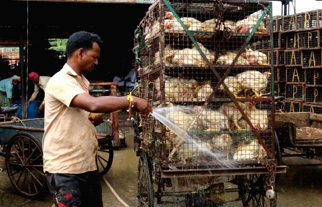 Gazipur Chicken Market. (File Photo: IANS)