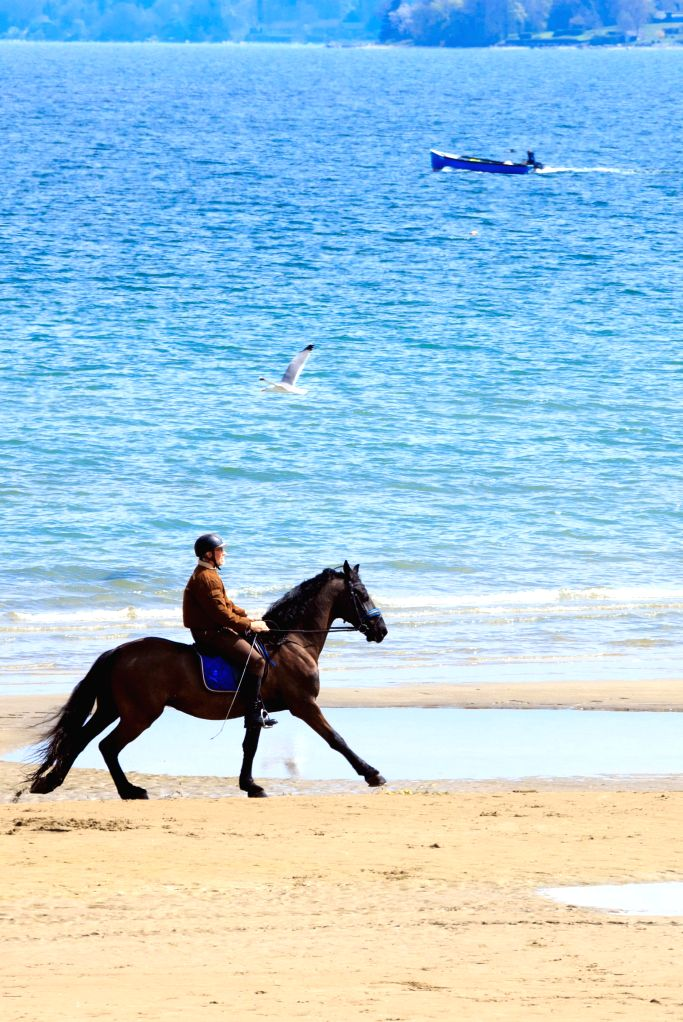A man rides a horse to enjoy comfortable Spring sunshine on the beach of Lemon Lake near the French town of Sciez which is located on the border of France and ...