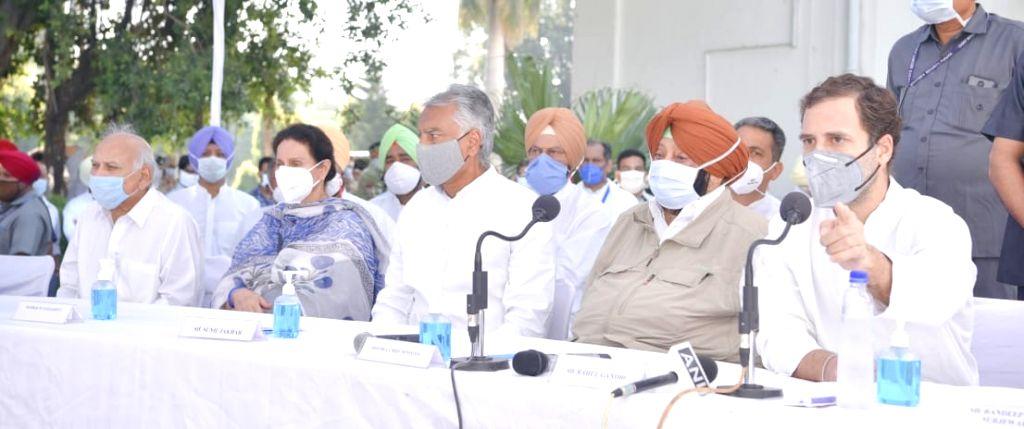 Give me free Press, key institutions: Rahul Gandhi - Rahul Gandhi