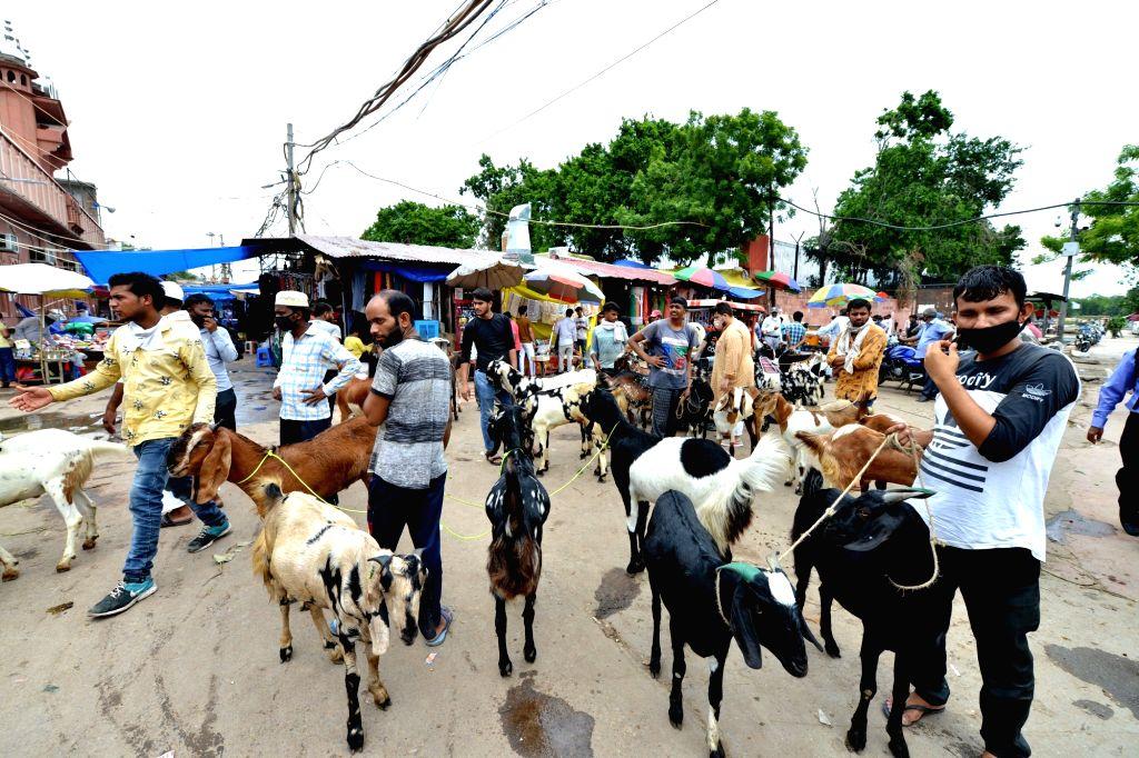 Goat traders wait for buyers at Delhi's Jama Masjid ahead of Eid-Ul-Adha celebrations, on July 30, 2020.