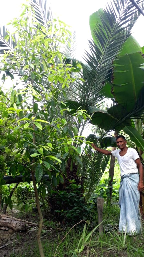 Gonda farmers growing immunity boosters in their farms during Corona crisis.
