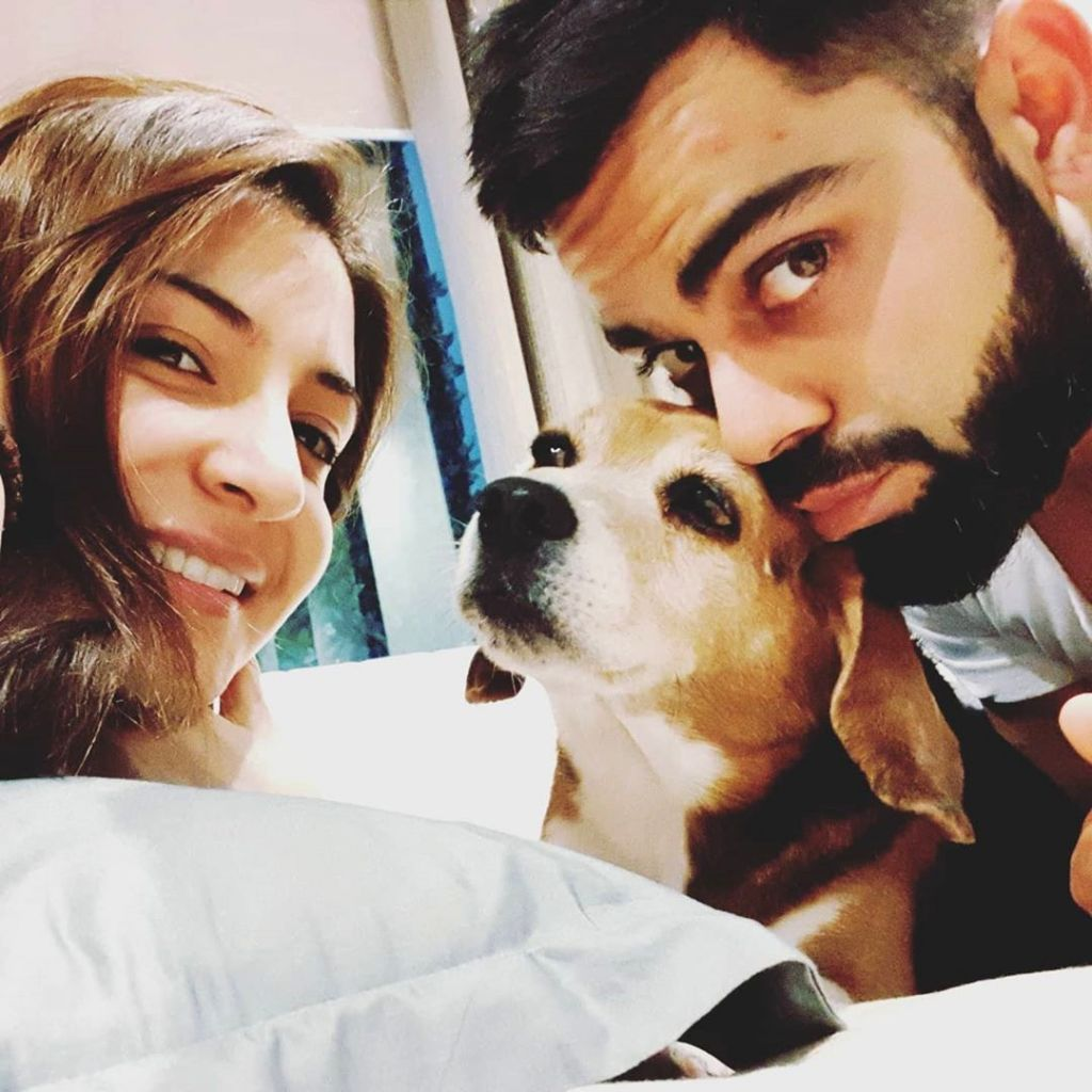 Gone to a better place: Kohli mourns death of pet dog Bruno.
