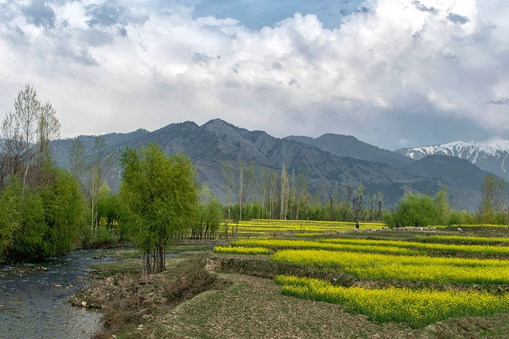 Govt paves way for all Indians to buy land in J&K