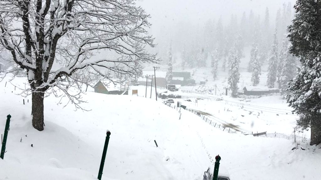 Gulmarg: A view of the snow-covered landscape of Jammu and Kashmir's Gulmarg after fresh snowfall on Nov 14, 2018. (Photo: IANS)